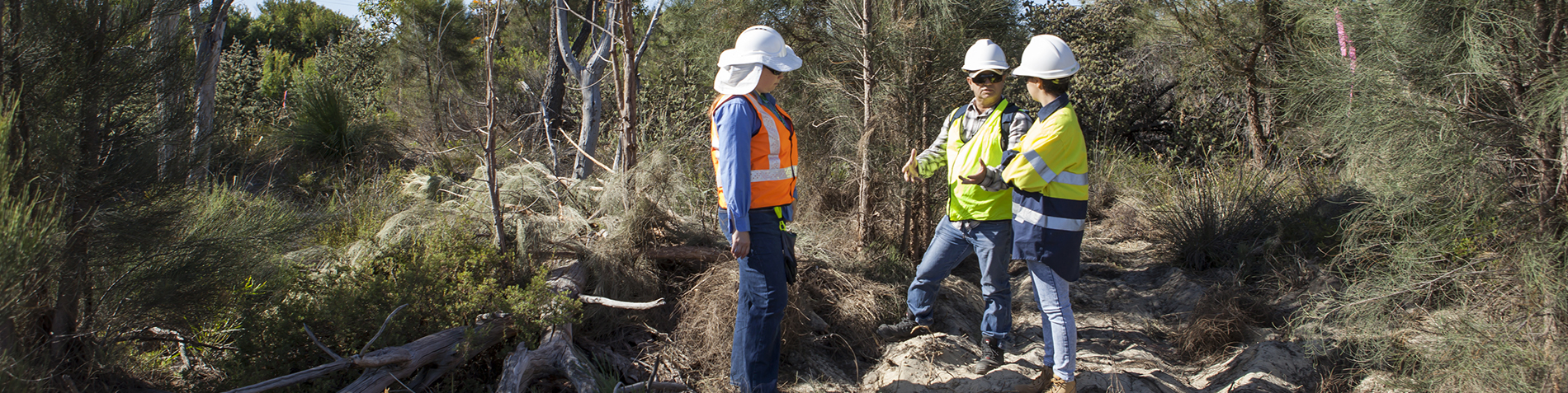 Environmental Officers out in the field